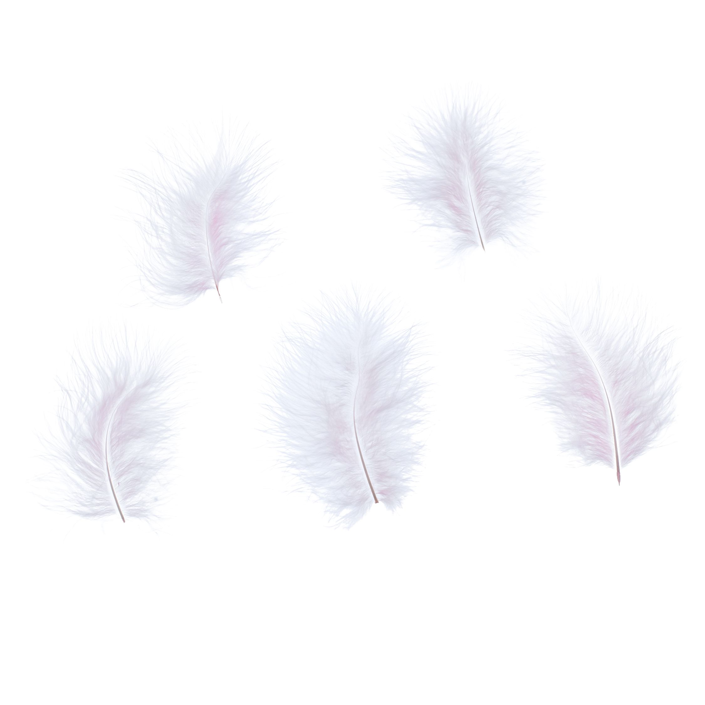 John Lewis Marabou Feathers, Pack of 5, Pink
