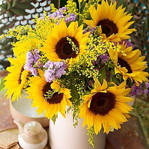 John Lewis Flowers Untitled page john lewis flowers fairtrade indian summer sisterspd