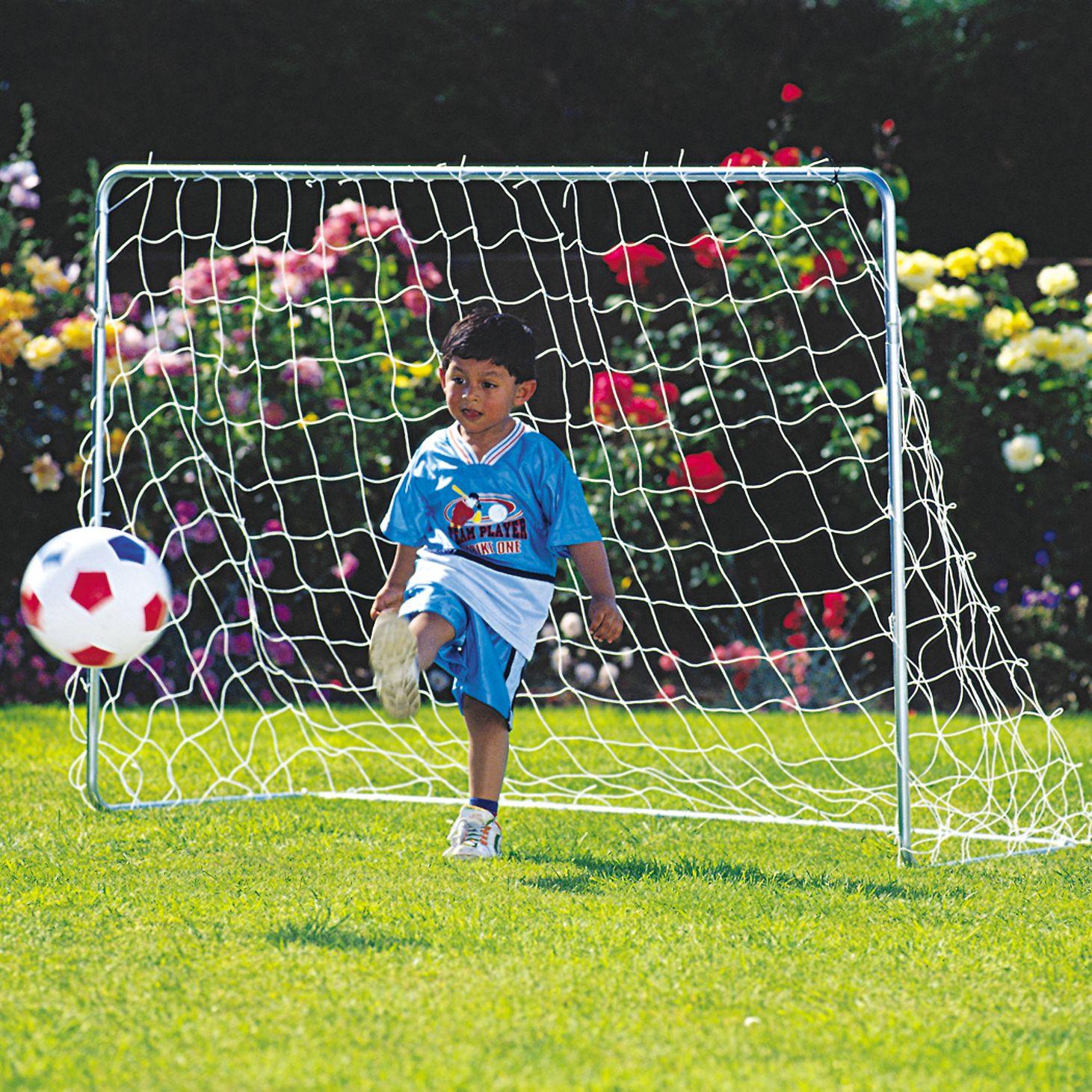 TP209 Goal