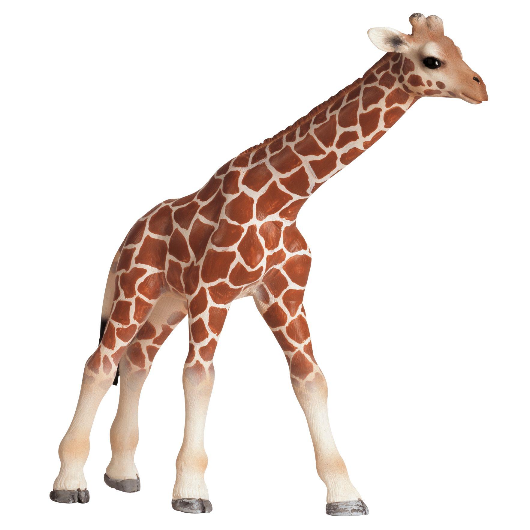 Schleich Wild Animals: Giraffe Calf